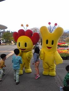 +++ りり☆Blog evolution +++ 広島在住OLの何かやらかしてる日記(ゝω・)o-DVC00249.jpg