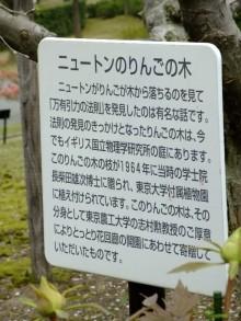 +++ りり☆Blog evolution +++ 広島在住OLの何かやらかしてる日記(ゝω・)o-20100418_139.jpg