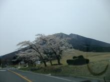 +++ りり☆Blog evolution +++ 広島在住OLの何かやらかしてる日記(ゝω・)o-20100418_245.jpg