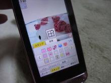 +++ りり☆Blog evolution +++ 広島在住OLの何かやらかしてる日記(ゝω・)o-DSCF7689.JPG