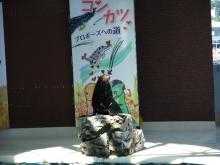 +++ りり☆Blog evolution +++ 広島在住OLの何かやらかしてる日記(ゝω・)o-DSCF7936.jpg