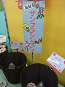 +++ りり☆Blog evolution +++ 広島在住OLの何かやらかしてる日記(ゝω・)o-DSCF8392.JPG
