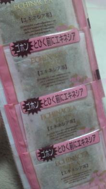$+++ りり☆Blog evolution +++ 広島在住OLの何かやらかしてる日記(ゝω・)o-2010101521390000.jpg