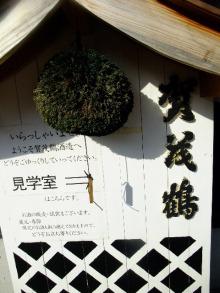 +++ りり☆Blog evolution +++ 広島在住OLの何かやらかしてる日記(ゝω・)o-DSCF9026.JPG