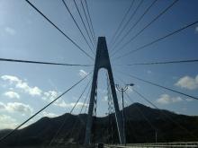 +++ りり☆Blog evolution +++ 広島在住OLの何かやらかしてる日記(ゝω・)o-20110101_016.jpg