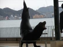 +++ りり☆Blog evolution +++ 広島在住OLの何かやらかしてる日記(ゝω・)o-20110102_092.jpg