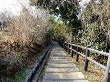 +++ りり☆Blog evolution +++ 広島在住OLの何かやらかしてる日記(ゝω・)o-20110213_065.jpg