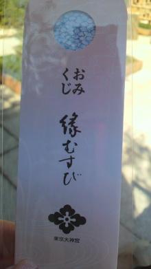 +++ りり☆Blog evolution +++ 広島在住OLの何かやらかしてる日記-2011031110510000.jpg