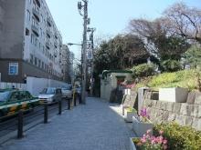 +++ りり☆Blog evolution +++ 広島在住OLの何かやらかしてる日記-20110311_073.jpg