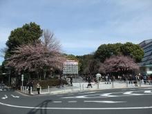 +++ りり☆Blog evolution +++ 広島在住OLの何かやらかしてる日記-20110312_007.jpg