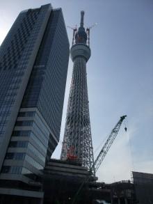 +++ りり☆Blog evolution +++ 広島在住OLの何かやらかしてる日記-20110312_038.jpg