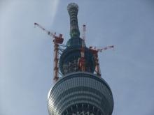 +++ りり☆Blog evolution +++ 広島在住OLの何かやらかしてる日記-20110312_045.jpg