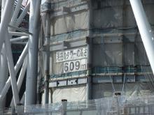 +++ りり☆Blog evolution +++ 広島在住OLの何かやらかしてる日記-20110312_049.jpg
