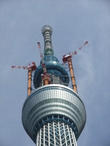 +++ りり☆Blog evolution +++ 広島在住OLの何かやらかしてる日記-20110312_061.jpg
