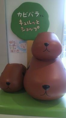 +++ りり☆Blog evolution +++ 広島在住OLの何かやらかしてる日記-2011031913050000.jpg