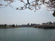 +++ りり☆Blog evolution +++ 広島在住OLの何かやらかしてる日記-20110409_000.jpg