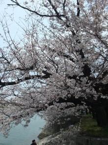 +++ りり☆Blog evolution +++ 広島在住OLの何かやらかしてる日記-20110409_010.jpg