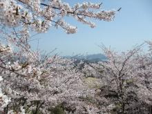 +++ りり☆Blog evolution +++ 広島在住OLの何かやらかしてる日記-20110410_050.jpg