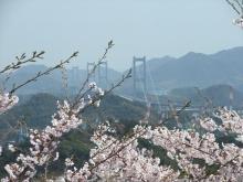+++ りり☆Blog evolution +++ 広島在住OLの何かやらかしてる日記-20110410_051.jpg