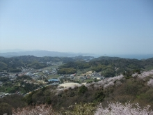 +++ りり☆Blog evolution +++ 広島在住OLの何かやらかしてる日記-20110410_060.jpg