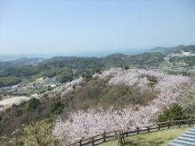 +++ りり☆Blog evolution +++ 広島在住OLの何かやらかしてる日記-20110410_061.jpg
