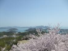 +++ りり☆Blog evolution +++ 広島在住OLの何かやらかしてる日記-20110410_062.jpg