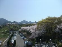 +++ りり☆Blog evolution +++ 広島在住OLの何かやらかしてる日記-20110410_083.jpg