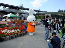 +++ りり☆Blog evolution +++ 広島在住OLの何かやらかしてる日記-20110424_158.jpg