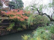 +++ りり☆Blog evolution +++ 広島在住OLの何かやらかしてる日記-20111105_049.jpg
