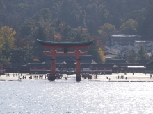 +++ りり☆Blog evolution +++ 広島在住OLの何かやらかしてる日記-20111120_009.jpg