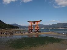 +++ りり☆Blog evolution +++ 広島在住OLの何かやらかしてる日記-20111120_035.jpg