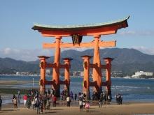 +++ りり☆Blog evolution +++ 広島在住OLの何かやらかしてる日記-20111120_036.jpg