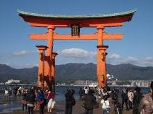 +++ りり☆Blog evolution +++ 広島在住OLの何かやらかしてる日記-20111120_045.jpg