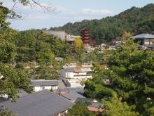 +++ りり☆Blog evolution +++ 広島在住OLの何かやらかしてる日記-20111120_155.jpg