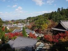 +++ りり☆Blog evolution +++ 広島在住OLの何かやらかしてる日記-20111120_169.jpg