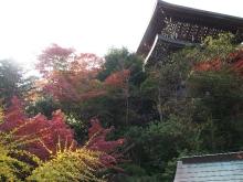 +++ りり☆Blog evolution +++ 広島在住OLの何かやらかしてる日記-20111120_179.jpg
