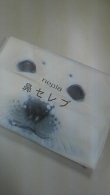 $+++ りり☆Blog evolution +++ 広島在住OLの何かやらかしてる日記-2011120208450000.jpg