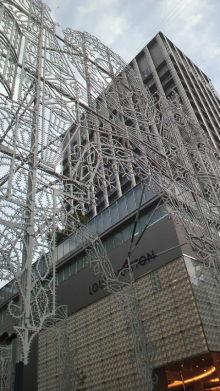 +++ りり☆Blog evolution +++ 広島在住OLの何かやらかしてる日記-2011120316190000.jpg