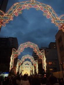 +++ りり☆Blog evolution +++ 広島在住OLの何かやらかしてる日記-20111203_051.jpg