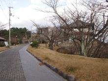 +++ りり☆Blog evolution +++ 広島在住OLの何かやらかしてる日記-20111218_076.jpg