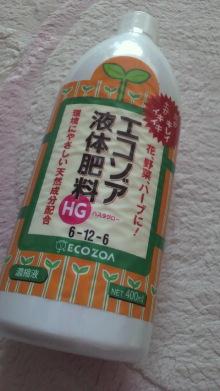 +++ りり☆Blog evolution +++ 広島在住OLの何かやらかしてる日記-2011122813410001.jpg