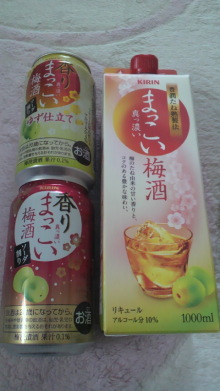 $+++ りり☆Blog evolution +++ 広島在住OLの何かやらかしてる日記-2011122915170000.jpg