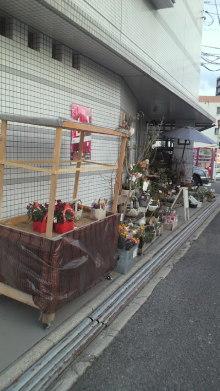 $+++ りり☆Blog evolution +++ 広島在住OLの何かやらかしてる日記-2012021017150000.jpg