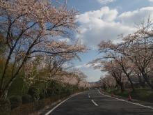 +++ りり☆Blog evolution +++ 広島在住OLの何かやらかしてる日記-20120407_000.jpg