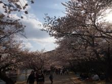 +++ りり☆Blog evolution +++ 広島在住OLの何かやらかしてる日記-20120407_010.jpg