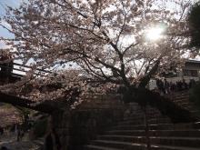 +++ りり☆Blog evolution +++ 広島在住OLの何かやらかしてる日記-20120407_017.jpg