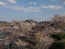 +++ りり☆Blog evolution +++ 広島在住OLの何かやらかしてる日記-20120407_024.jpg
