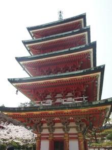 +++ りり☆Blog evolution +++ 広島在住OLの何かやらかしてる日記-20120408_061.jpg