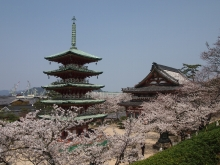 +++ りり☆Blog evolution +++ 広島在住OLの何かやらかしてる日記-20120408_120.jpg