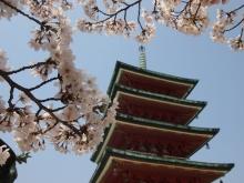 +++ りり☆Blog evolution +++ 広島在住OLの何かやらかしてる日記-20120408_124.jpg